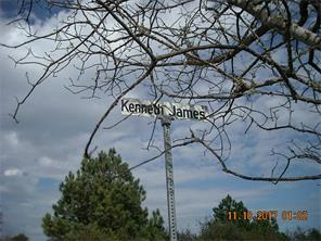 Lot 2 Kenneth James Road, Prairie View, TX 77446