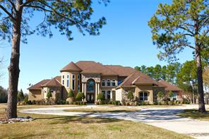 Houston Home at 2 Dominion Court Friendswood                           , TX                           , 77546-6206 For Sale