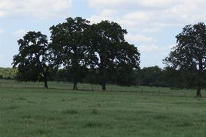 12246 CR 405, Normangee, TX 77871