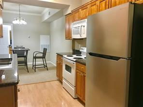 Houston Home at 2255 Braeswood Park Drive 286 Houston                           , TX                           , 77030-4434 For Sale