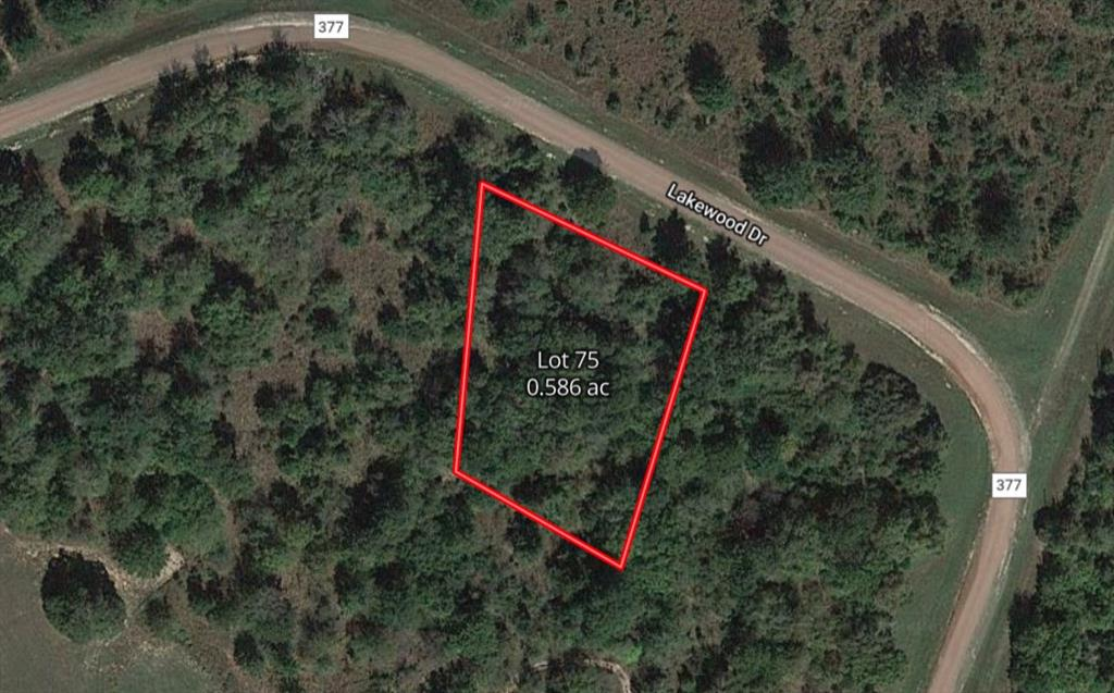 Lot 75 County Rd 377 1.6931, Marquez, Texas 77865, ,Lots,For Sale,County Rd 377,8417862