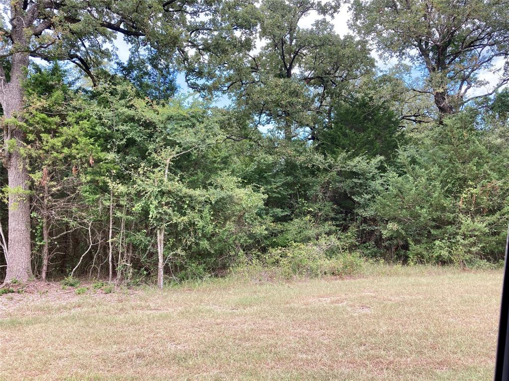 Lot 98 County Rd 377 1.6931, Marquez, Texas 77865, ,Lots,For Sale,County Rd 377,97442725