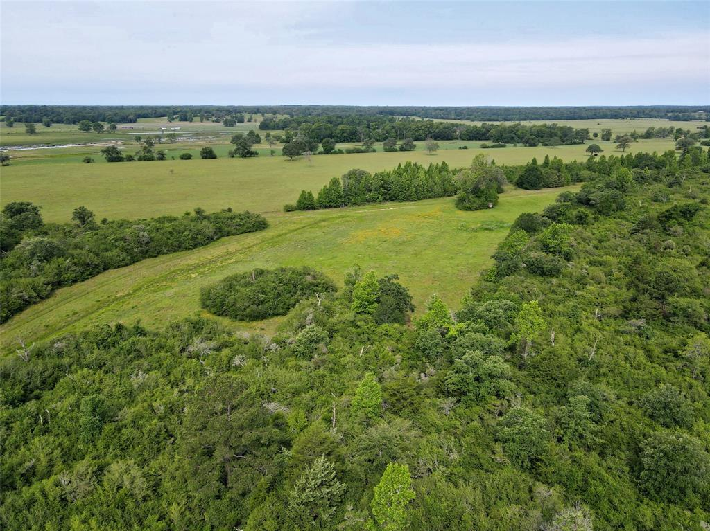 175 ac CR 122, Centerville, Texas 75833, ,Country Homes/Acreage,For Sale,CR 122,31010225