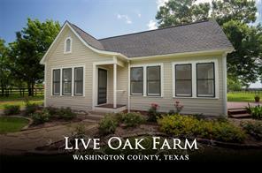 17152 Fm 1155 Live Oak, Washington, TX 77880