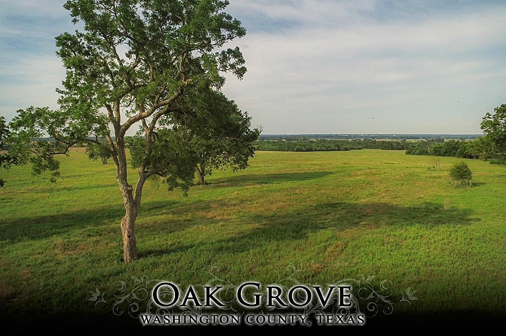17 Flat Prairie Road, Washington, TX 77880