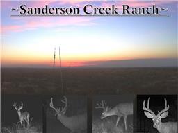 TBD Hwy 90, Sanderson TX 78948