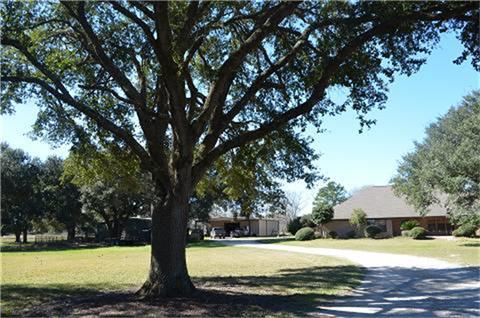 319 Wallace Road, Hankamer, TX 77560