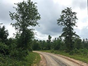 18 Ac Willow Springs Road, Oakhurst, TX 77331
