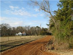 5 Ac County Road 2120, Latexo TX 75849