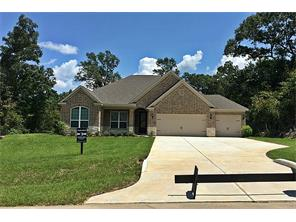 Houston Home at 223 Magnolia Reserve Loop Magnolia                           , TX                           , 77354 For Sale