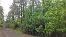 Houston Home at TBD Cr 3080 Woodville                           , TX                           , 75979 For Sale