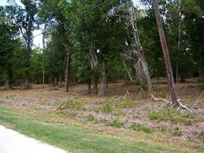 0 oak hollow drive, dickinson, TX 77539