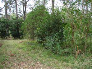 Houston Home at 0000 County Road 3709 Splendora                           , TX                           , 77372 For Sale