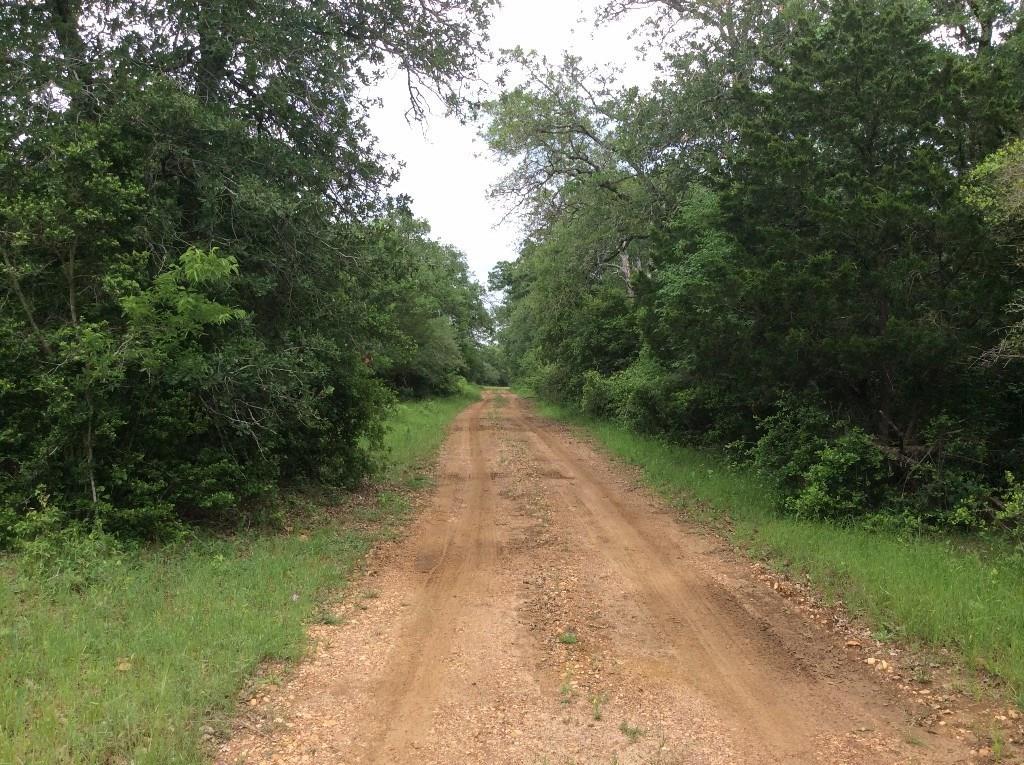 0 Saegert Road, Paige, TX 78659