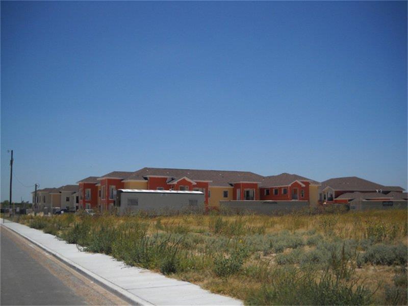 315 Butterfly Garden Drive, Rio Grande City, TX 78582