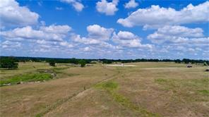 TBD County Road 220, Tract 4, Anderson, TX 77830
