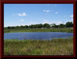 430 Hunters Creek Way, Hockley, TX, 77447