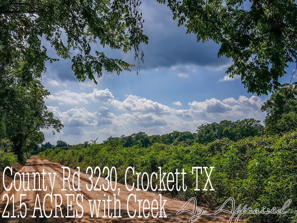 21 ac County Rd 3230, Crockett, TX 75835