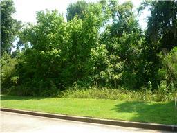 Houston Home at 321 Jasper Cove Missouri City                           , TX                           , 77459 For Sale