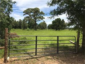 Houston Home at 29700 Joseph Road Hockley , TX , 77447 For Sale