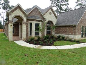 Houston Home at 17417 Country Skies Magnolia                           , TX                           , 77355 For Sale