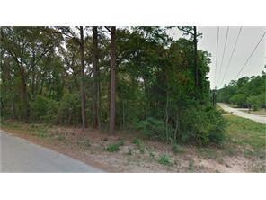 0 Green Persimmons, Magnolia, TX, 77354