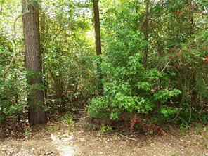 Houston Home at 000 Lake Road Coldspring , TX , 77331 For Sale