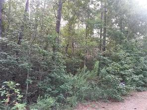 000 Forest View, New Caney, TX, 77357