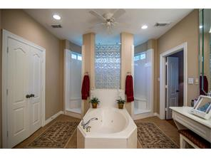 The master bathroom is to die for! The shower is magnificent with two shower heads