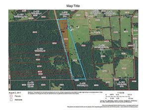 tdb fm 233/chic watson road, trinity, TX 75862