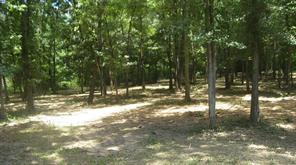 Most beautiful wooded lot.  Oak trees galore, easy to walk,