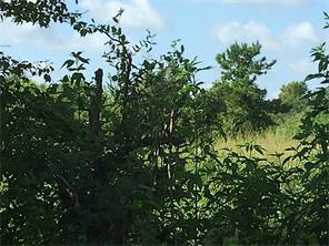 2500 County Road 62, Rosharon, TX, 77583