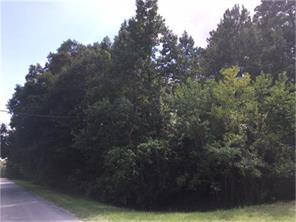 49B Ivy Leaf Dr, Huffman, TX, 77336