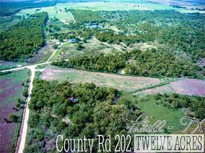 Lot 17 County Rd 202, Powell, TX 75153