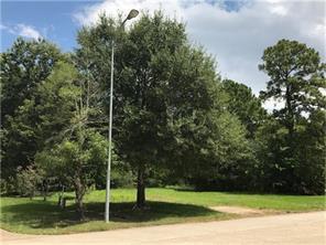 17810 Sugar Pine, Houston, TX, 77090