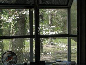View from box-window in kitchen sink area.  Visualize the deer and the incredible sights of nature,