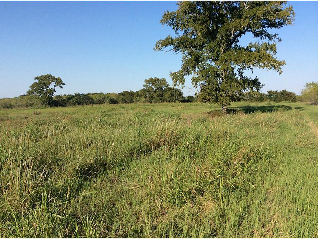 TBD League Line Road, Smithville, TX 78957