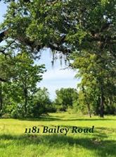 1181 Bailey Road, Alleyton, TX 78935