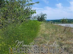 255 Blue Marlin, Bluff Dale TX 76433