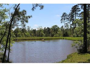 This beautiful manicured property is adjoined on two sides by the Sam Houston National Forest .