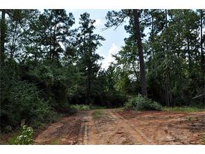 Houston Home at 160 Ac Snell Road Livingston                           , TX                           , 77351 For Sale