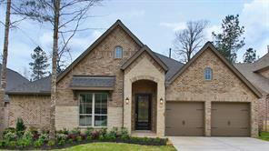 Houston Home at 119 Bradford Bluff Drive Montgomery                           , TX                           , 77316 For Sale