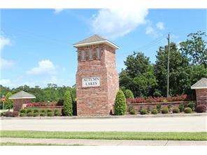 Houston Home at 13227 Fairfield Arbor Drive Houston                           , TX                           , 77059 For Sale