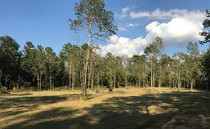 Seller has cleared a large section with a beautiful area to build your dream home!