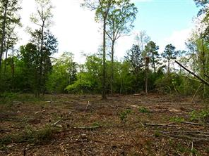 Houston Home at 31 Ac Hwy 190 Woodville , TX , 75979 For Sale