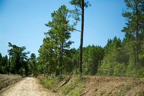 Houston Home at 125 Ac County Road 4020 Lovelady , TX , 75851 For Sale