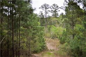 94 ac off campbell cemetery road, crockett, TX 75835