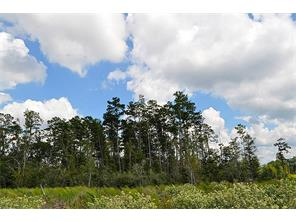 Houston Home at 145 Ac Upper Leggett Road Livingston , TX , 77351 For Sale