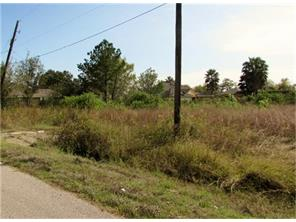 419 Ray Avenue, Arcola, TX 77583