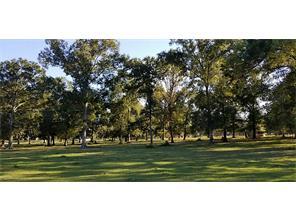 100 E Hill Ranch, New Waverly, TX 77358